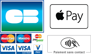 CB, VISA, MasterCard, Paiement sans contact, Apple Pay